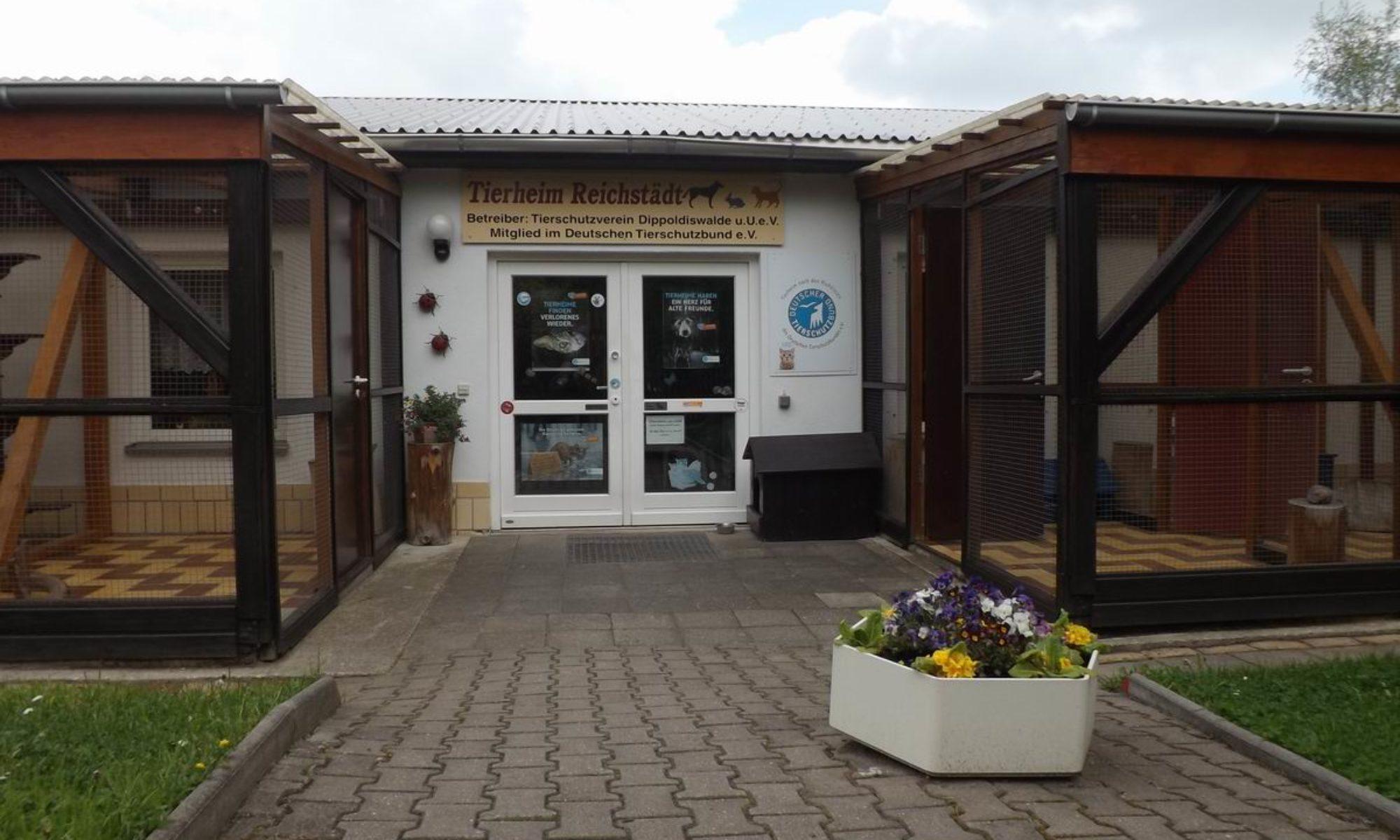 Tierschutzverein Dippoldiswalde u.U. e.V. Tierheim Reichstädt